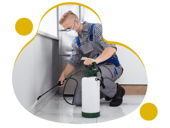 Expert Pest Control Canning Vale